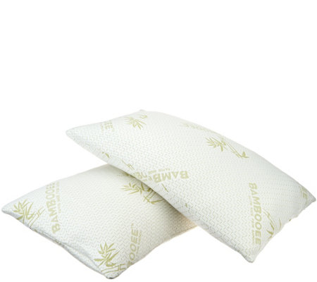 S/2 Queen Memory Foam Pillows w/Rayon MadeFrom Bamboo by Lori Greiner