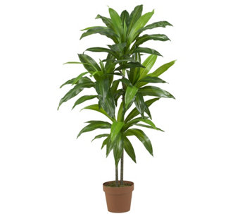 "48"" Real Touch Dracaena Plant by Nearly Natural - H290618"