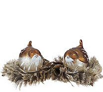 Set of 2 Mercury Glass Glittered Birds with Feather Nests - H206619
