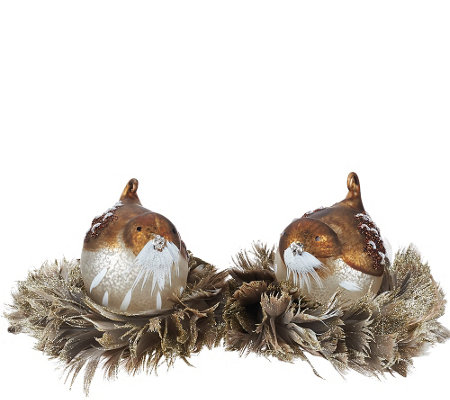 Set of 2 Mercury Glass Glittered Birds with Feather Nests