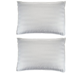 Northern Nights Down Surround Set of 2 Firm Jumbo Pillows - H209719
