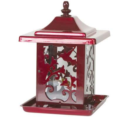 Hummingbird Design Seed Feeder