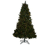 Bethlehem Lights 6.5' Fox Meadow Christmas Tree w/Instant Power - H205620