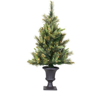 3.5' Cashmere Pine Tree by Vickerman - H289821