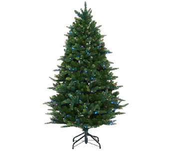 ED On Air Santa's Best 5' Douglas Fir Tree by Ellen DeGeneres - H204022