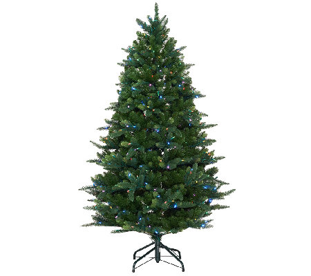 ED On Air Santa's Best 5' Douglas Fir Tree by Ellen DeGeneres