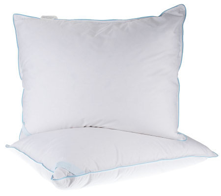 Northern Nights STD S/2 Down & Uncrushable Feather Pillows