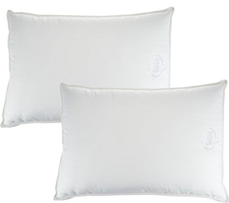 Serta Perfect Sleeper Set of 2 Jumbo Pillows with Nanotex