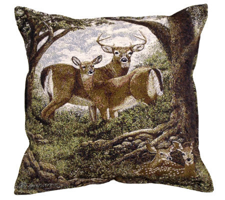 Hidden Eyes Pillow