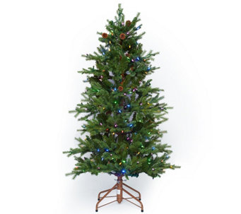 ED On Air Santa's Best 5' Natural Rustic Spruce Tree by Ellen DeGeneres - H209425