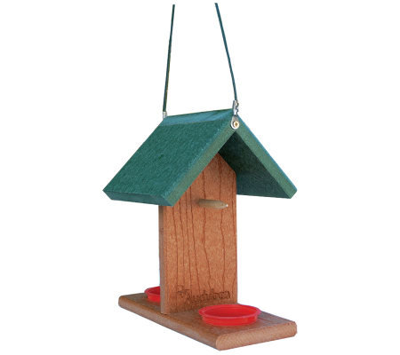 Go Green Oriole-Bluebird Feeder