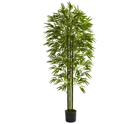 6' Bamboo Tree by Nearly Natural