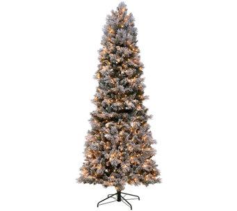 Christmas Trees Qvc Com
