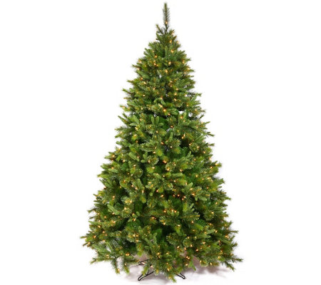 12' Cashmere Pine Tree with Warm White LED Lights by Vickerma