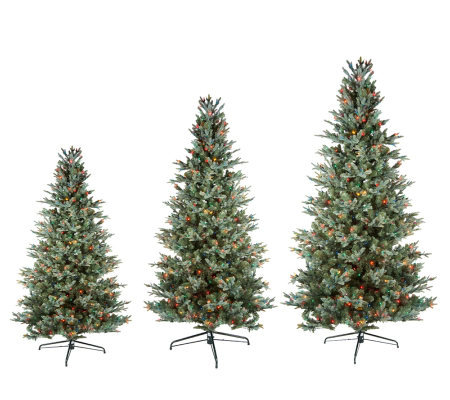 Bethlehem Lights Blue Spruce Christmas Tree w/Instant Power