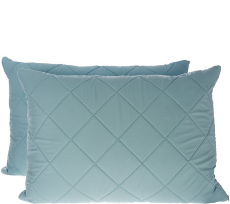 Home Reflections Set of 2 Pillows with Comfort Case
