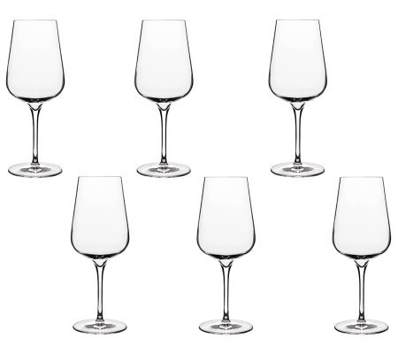 Luigi Bormioli 15.25-oz Intenso White Wine Glasses - Set of 6