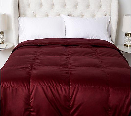 Cotton 600fp Down Comforter, Northern Nights Bedding