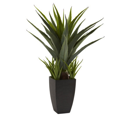 2-1/2' Agave w/Black Planter by Nearly Natural