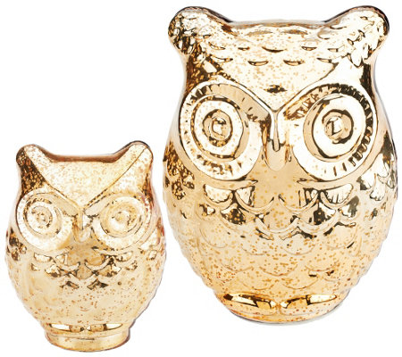 Home Reflections S/2 Prelit Mercury Glass Owls with Timers