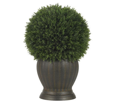 Cedar Ball Topiary Plant by Nearly Natural