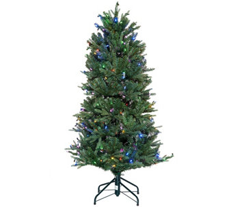 ED On Air Santa's Best 5' Blue Royal Spruce Tree by Ellen DeGeneres - H209435