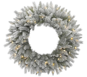 "24"" Frosted Sable Pine Wreath with  Clear Lights by Vickerman - H289835"