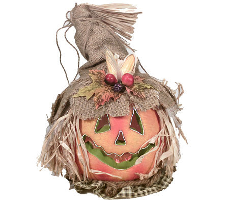 Country Harvest Fiber Optic Scarecrow Pumpkin