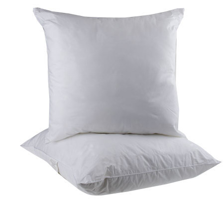 "Set of 2 28""x28"" Euro Sham Stuffer Pillows"