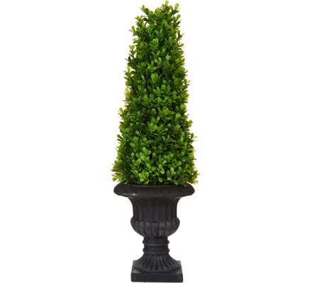 "21"" Boxwood Topiary with Urn by Valerie"