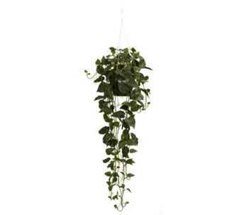 Philodendron Hanging Basket Plant by Nearly Natural - H357338