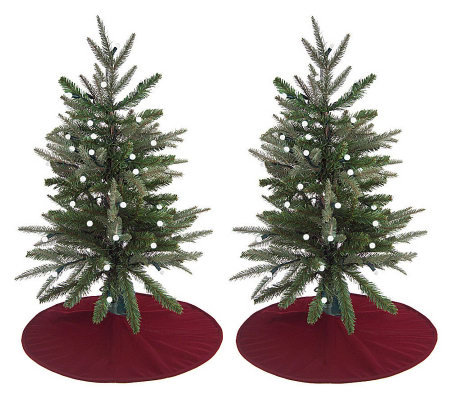 "BethlehemLights Set of 2 BatteryOperated 32"" Stake Trees w/Built-inTimer"