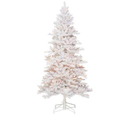 Bethlehem Lights 9' White Spruce Christmas Tree w/Instant Power ...