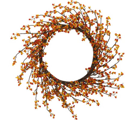 "24"" Sweet Bitter Wreath by Nearly Natural"