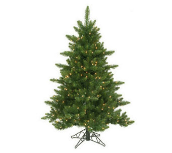 12' Camdon Prelit Fir Tree by Vickerman - H155244