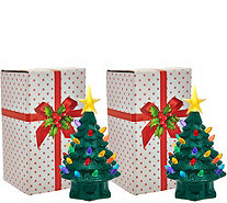 "Mr. Christmas Set of 2 7"" Miniature Nostalgic Tabletop Trees - H208545"