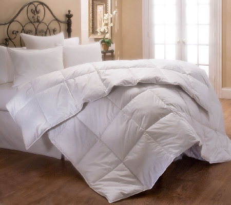 Stearns & Foster 400 TC Pima Cotton Sateen Queen Comforter