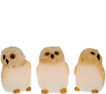 Set of 3 Candle Impressions Flameless Mini Owls - H205946