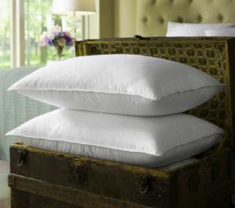 s2 luxury primaloft pillows h287347