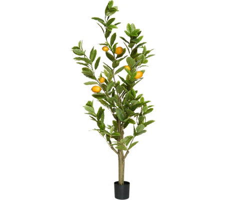 5' Decorative Lemon Tree with Base by Valerie