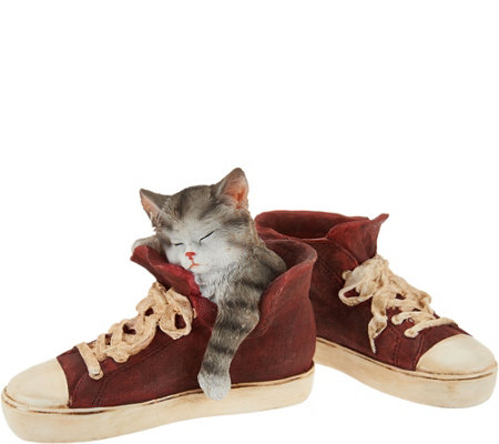 Indoor/Outdoor Sleeping Puppy or Kitten in Sneaker by Valerie