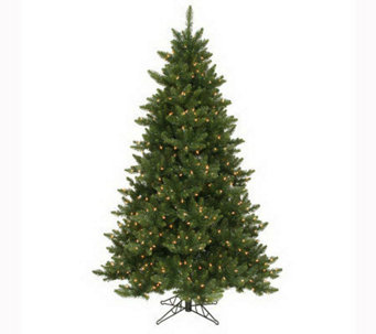 6-1/2' Camdon Fir Tree by Vickerman - H142952