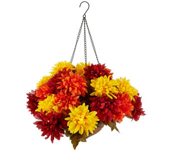 Bethlehem Lights Battery Op. Harvest Mum Hanging Basket - H208654