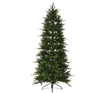 ED On Air Santa's Best 7.5' Norway Spruce Tree by Ellen DeGeneres - H205955