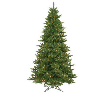 8-1/2' Camdon Fir Tree by Vickerman - H155156