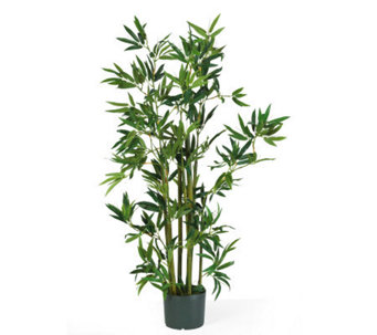 4' Bamboo Plant by Nearly Natural - H179256