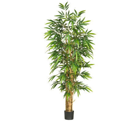 6' Buddah's Belly Bamboo Tree by Nearly Natural