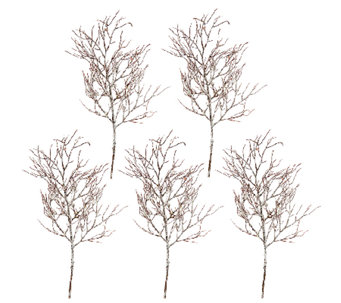 """As Is"" Set of 5 24"" Frosted Twig Branch Sprays by Valerie - H208158"