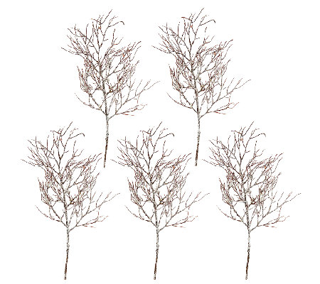 """As Is"" Set of 5 24"" Frosted Twig Branch Sprays by Valerie"