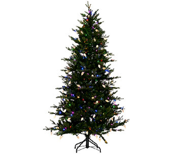 ED On Air 6.5' Denmark Tree with Retro C9 Bulbs by Ellen DeGeneres - H205960